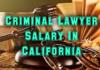 Criminal Lawyer Salary