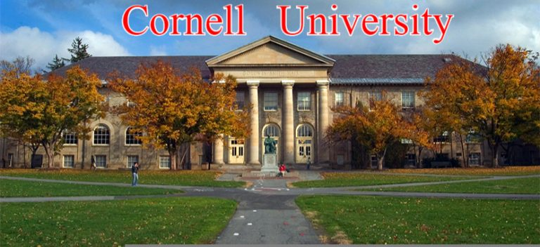 engineering college essays cornell The 2015 universal college application is live and the common application will be live on friday, august 1 the cornell supplements of both applications will ask you to complete the essay.