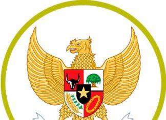 Indonesia Team