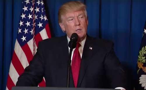 President Donald Trump Biography