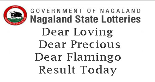 Dear Flamingo Lottery Result Today 8pm